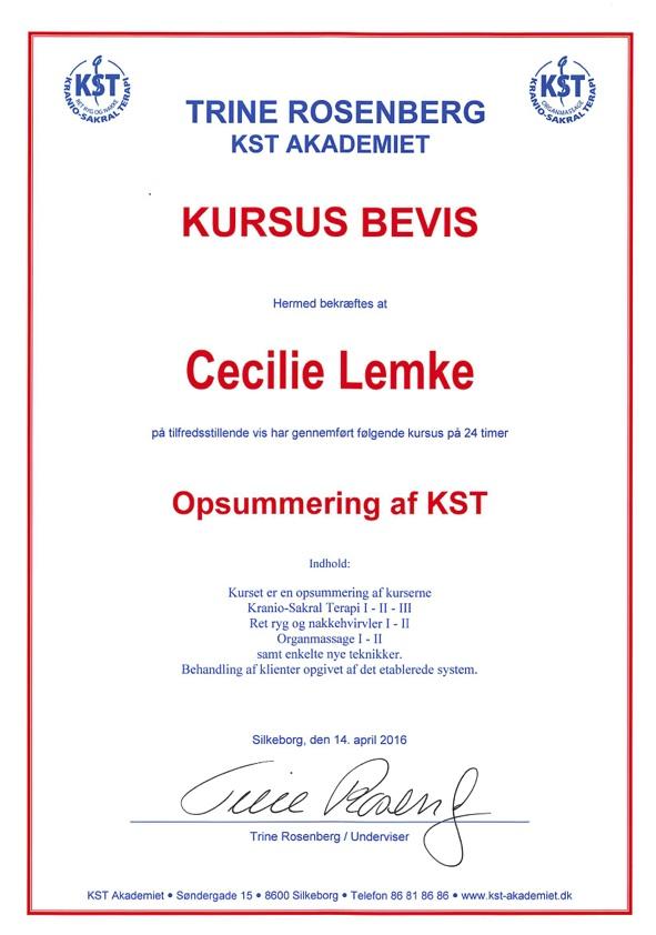 kst_opsumering_2016